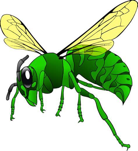hornet clipart green hornet clip at clker vector clip