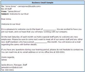 How To Write A Professional Email Template by Professional Email Format Slim Image