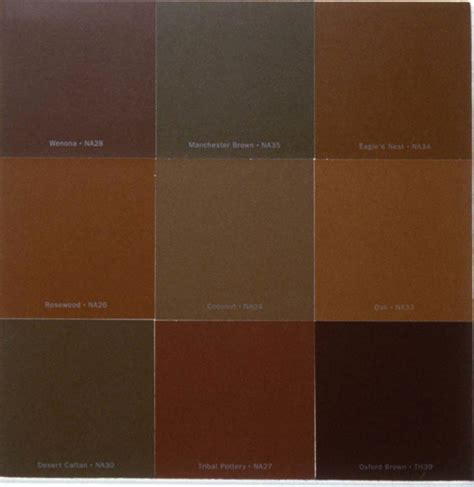 shades of brown paint different shades of brown paint amazing thaduder com