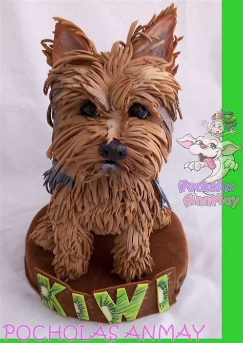 best bed for yorkie beds for yorkies restateco beds and costumes