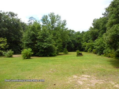 forest backyard 1331 forest ridge rd e mobile al 36618 coming soon the cummings company