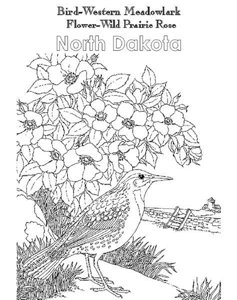 a to z kids stuff north dakota state bird western