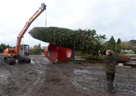 gallery of christmas tree farm equipment fabulous homes