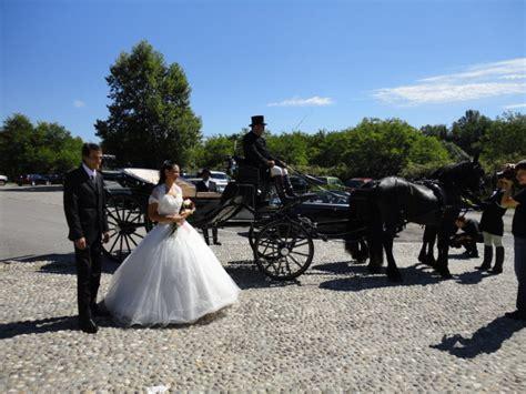 Cavalli Carrozze - carrozze e cavalli a disposizion