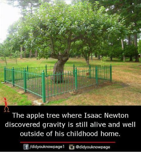 isaac newton biography gravity 25 best memes about isaac newton isaac newton memes
