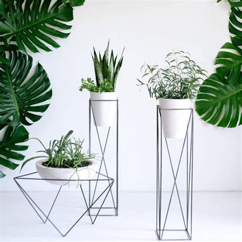 Plante D Intérieur A Fleur by 17 Meilleures Id 233 Es 224 Propos De Supports Pour Plantes Sur