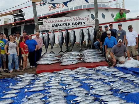 party boat port aransas scat cat tuna trips port aransas 360 tuna the leading