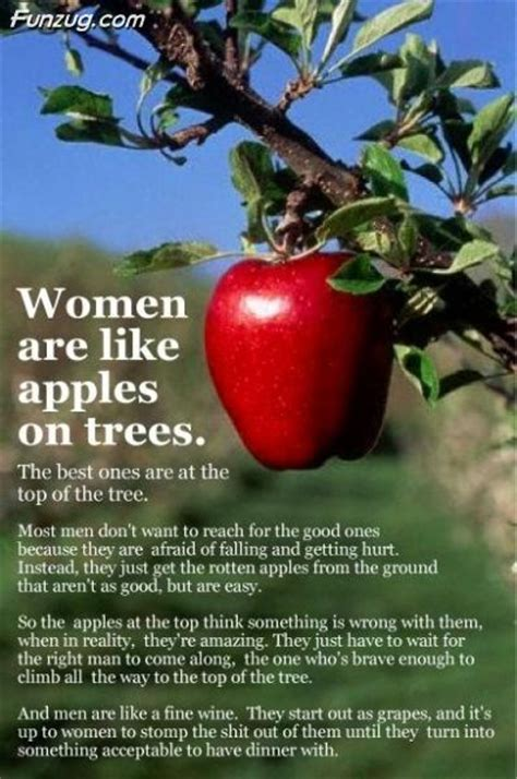 apple quotes quotes about apple trees quotesgram