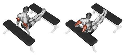 zu hause trainieren ᐅᐅᐅ wie brustmuskeln trainieren ohne ger 228 te zuhause