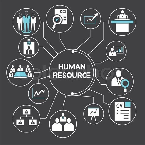 free design resources vector business and human resource management network info