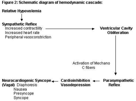 sindrome vaso vagale syncope vasovagal causes symptoms treatment syncope