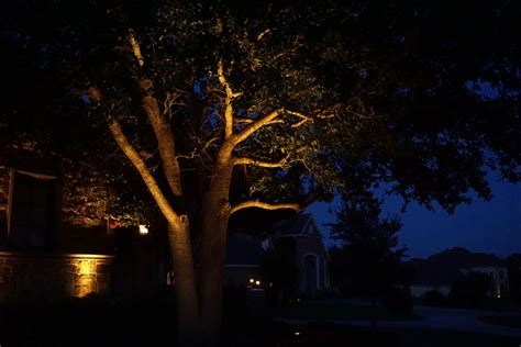 Landscape Lighting Plano Tree Uplight Exterior Lighting Dallas Landscape 21 Bg Dallas Landscape Lighting