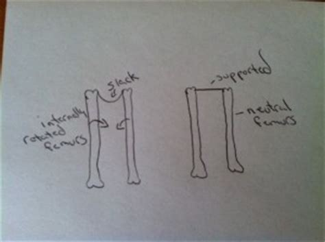rotate your femurs support your uterus alignment monkey