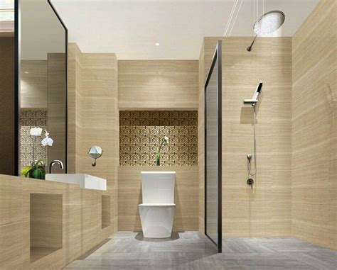 Cing Toilet Design by Toilet And Bathroom Design