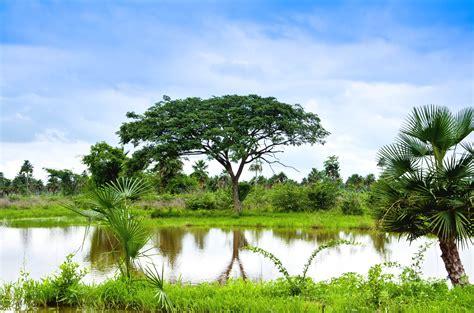 imagenes de paisajes naturales venezolanos nuevos paquetes tur 237 sticos nacionales ofrece venetur