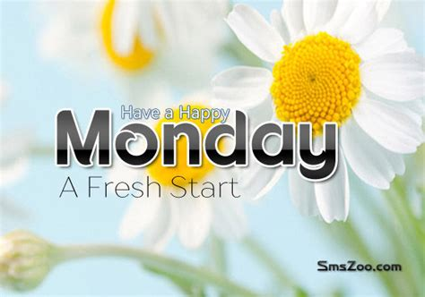 Mondays Fresh a happy monday a fresh start pictures photos and