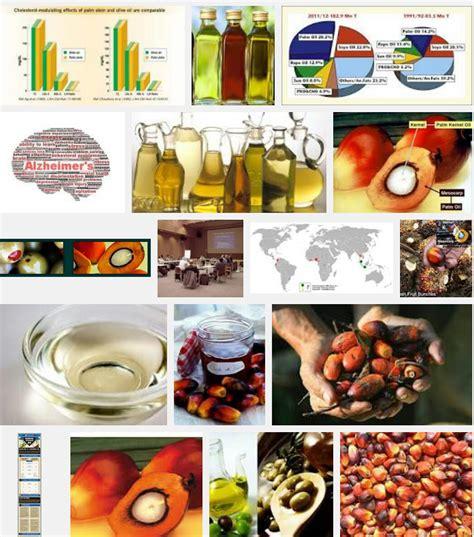 Minyak Zaitun Untuk Masak minyak zaitun untuk masak vs minyak sawit olive asli