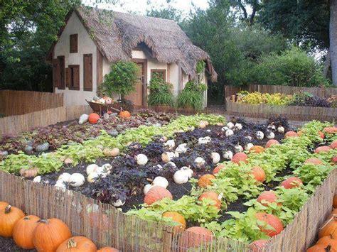 fall vegetable garden ideas 25 best pumpkin growing ideas on