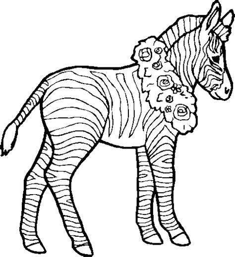 zebra pattern coloring page zebra coloring pages