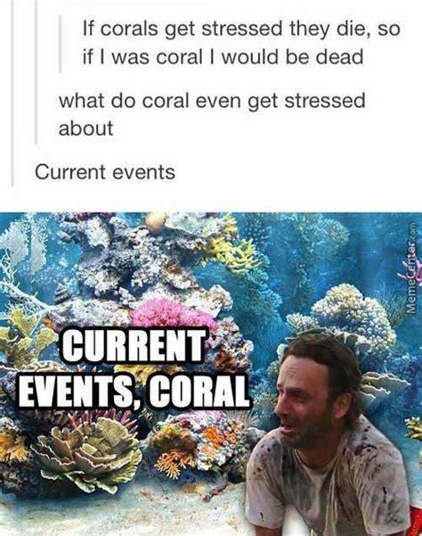 coral meme coral grimes meme