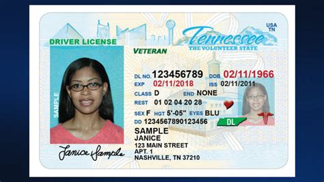tennessee drivers license template temporary id template related keywords