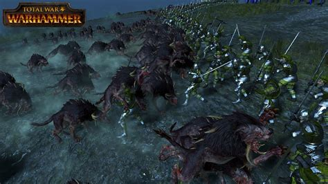 dogs of war the dogs of war w speirs and daft total war warhammer