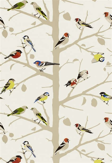 bird wallpaper for walls sarah s house powder room bird wallpaper source the inspired room