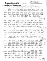 Transcription And Translation Practice Worksheet Answers by Dna Coloring Pages Dna Coloring Ultimate Coloring