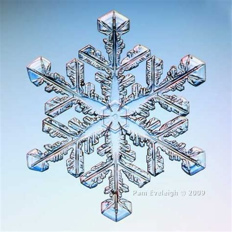 snowflake patterns real 348 best snowflakes snow crystals images on pinterest