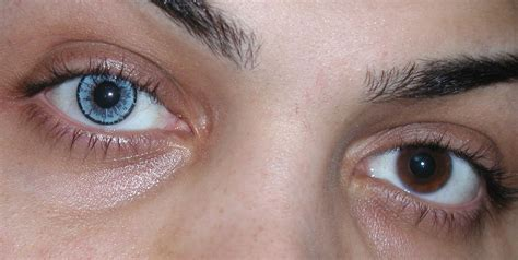 real looking colored contacts eye colors baby blue contact lenses by touch