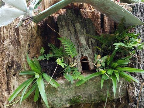 pin  cindy callaway  fairy garden fairy garden