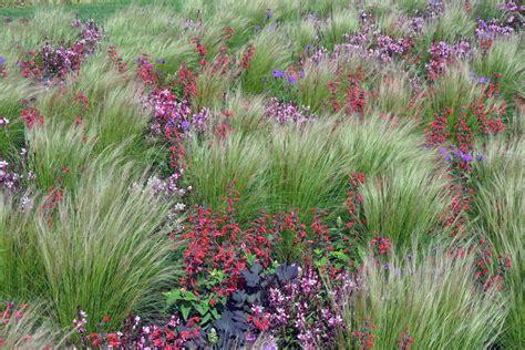 Garten Pflanzen Saurer Boden by Pflanzen Kreative G 228 Rten