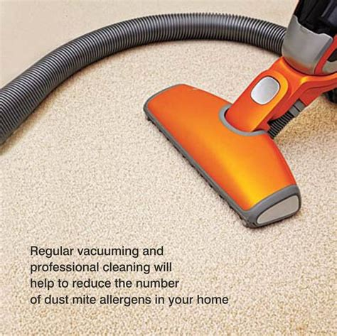 can you use carpet cleaner on upholstery 1000 images about national carpet cleaners association on