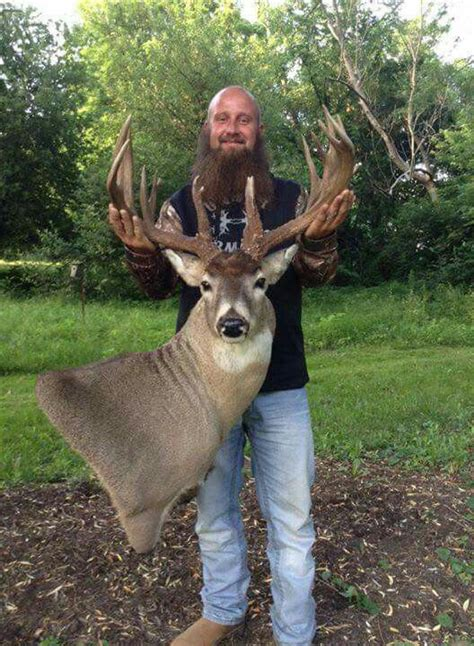 how to buck 78 images about trophy deer on deer