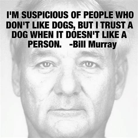 i dont like dogs bill murray i m suspicious of who don t like dogs but i trust a when it