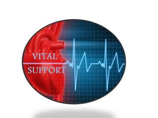 vital support home health care agency inc feasterville