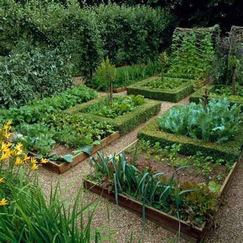 best 20 potager garden ideas on raised bed
