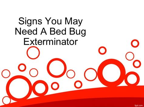 signs you have bed bugs signs you may need a bed bug exterminator