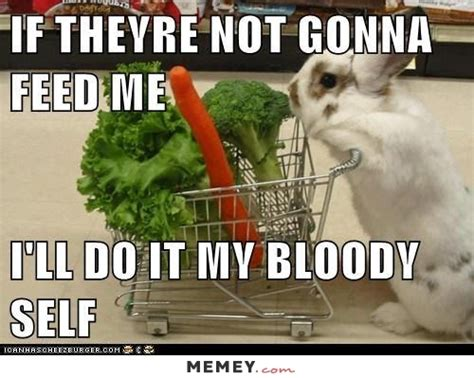 carrot memes funny carrot pictures memey com