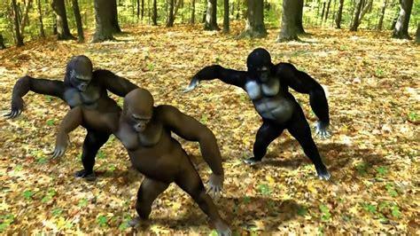 gorillas gangnam style hdavi youtube