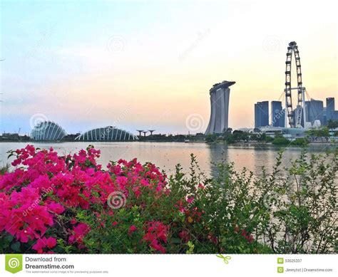 Skyline Flower Gardens Singapore Garden City Stock Photo Image 53525337