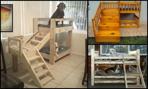 how to build a bunk bed how to build a bunk bed for your pets diy projects for