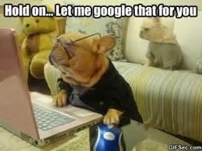 Dog On Computer Meme - meme google jpg