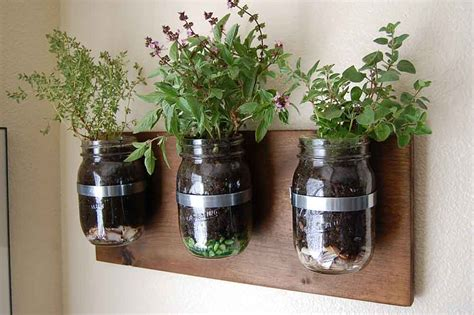 Growing Herbs In Your Kitchen Bray Scarff Kitchen Jar Herb Garden Wall