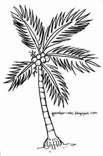 mewarnai gambar pohon dan buah kelapa mewarnai gambar foto anak sma