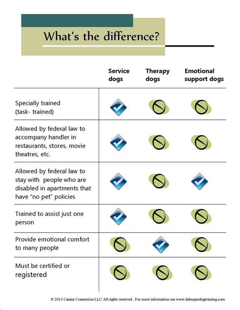 difference between service and therapy pin by e d on dogs