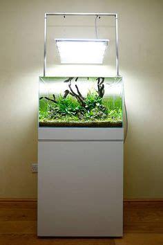 aquascape george farmer 1000 images about live planted aquariums on pinterest
