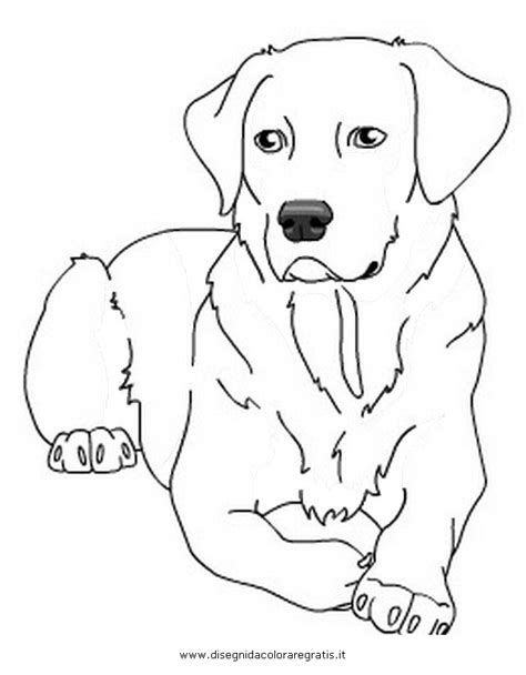 labrador puppy coloring page golden lab puppy sheet coloring pages