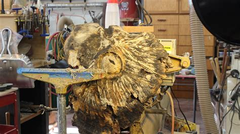 stabilizing  large burl woodturning  sam angelo