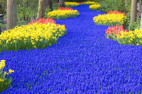 Amsterdam Flower Garden Most Beautiful Gardens In The World Hairstyles Makeup Trends Nail Designs Style Tips